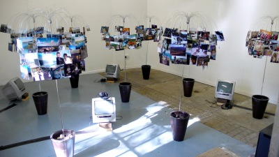 Diane Rickerby: ''New Roots' exhibition, Shippon Gallery, 2008