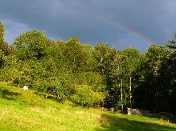 Rainbow-2014