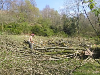 Clearing the back slope of trees, May 2007.