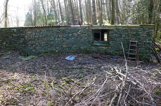 Back wall of the Merz Barn, Feb. 2008, showing the area re-roofed in plexiflex in 1965.