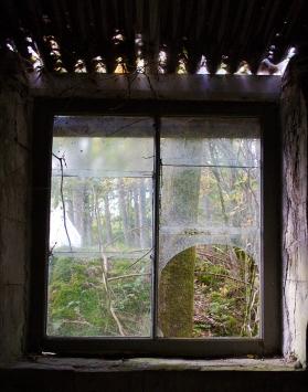 Broken side window in the Merz Barn, Feb. 2008, showing the roof from inside.