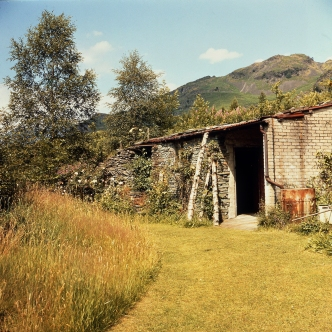 The Merz Barn in the 1950s