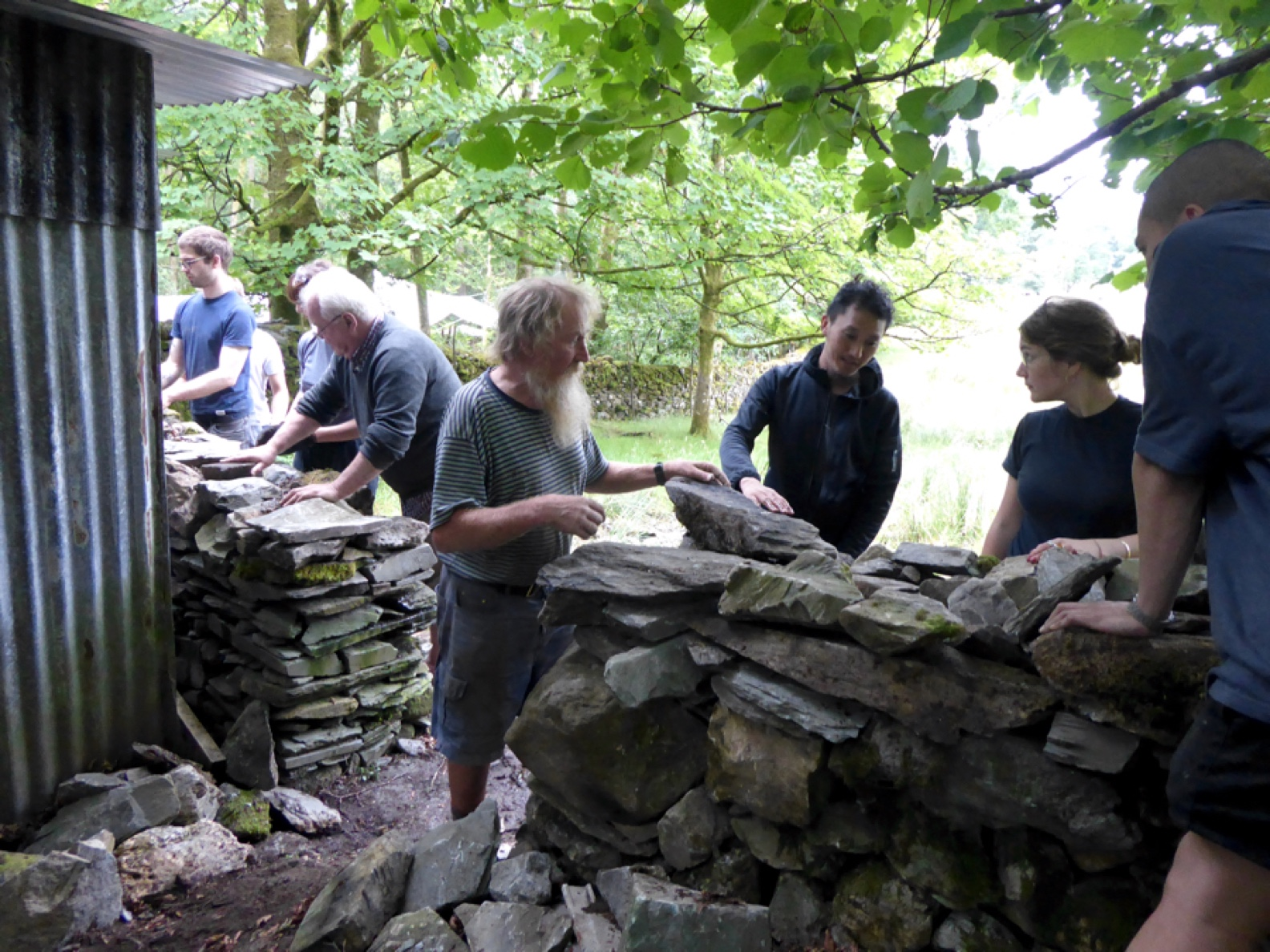 16 A Drystone walling for web