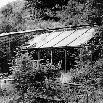 The original glasshouse in the 1950s